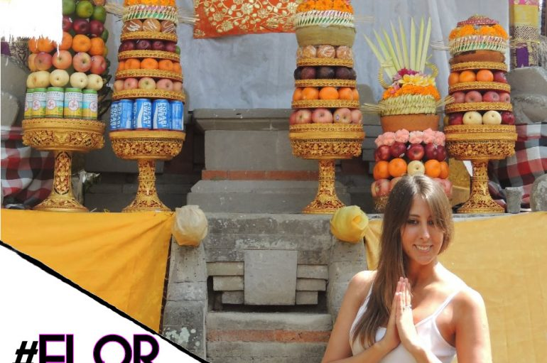 #FlorDeViaje: Entre canguros y koalas